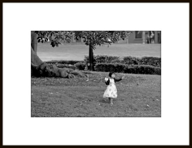 Victoria Park, Camperdown.© pagefortyone